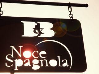 Noce Spagnola
